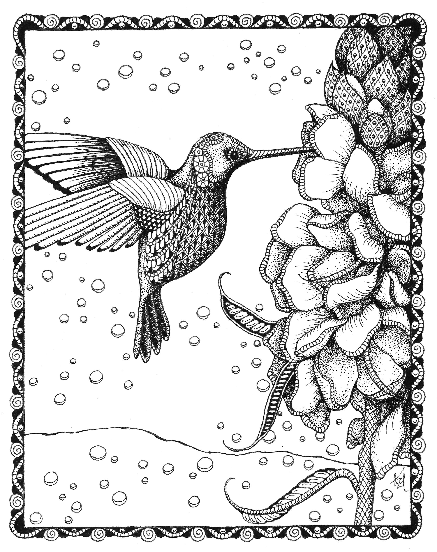 Hummingbird gladiolas lc11nc