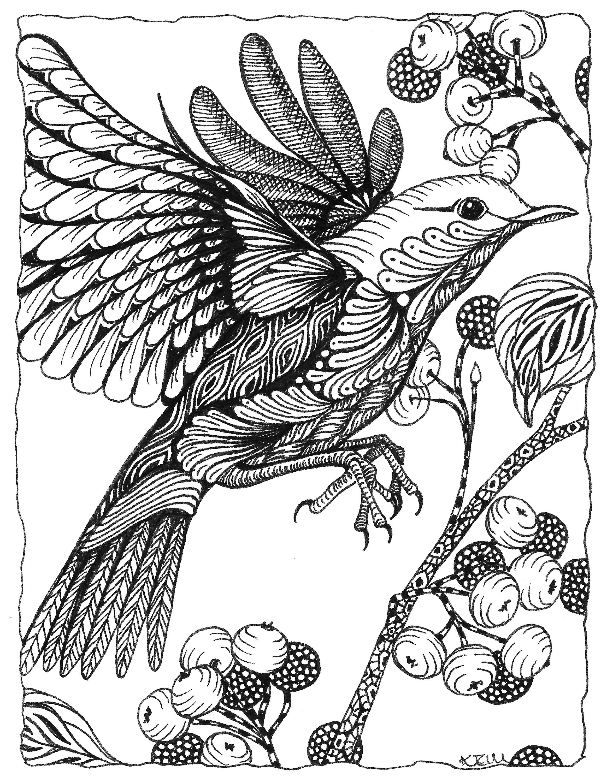 Bird berries pjwoib