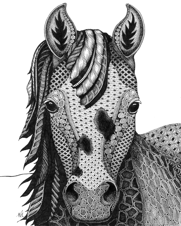 Horse poa tyatpc