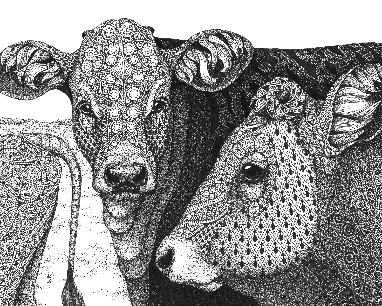 Cows the herd dpjr4j