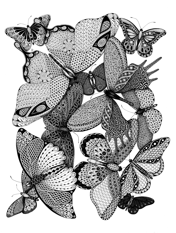 Melange des papillons qldu9f