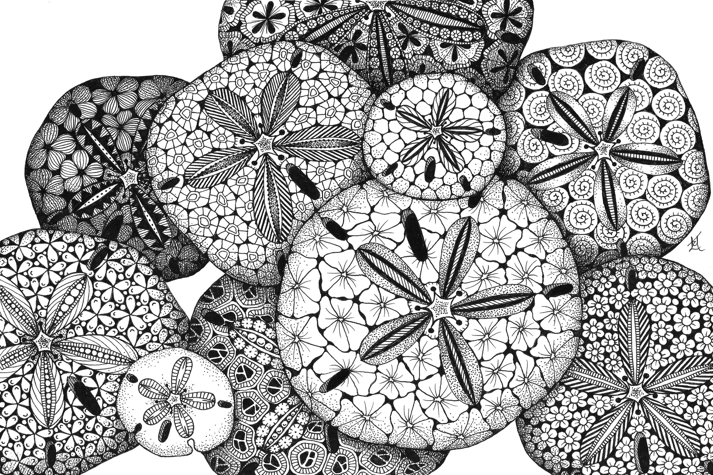 Island jewels yck37m