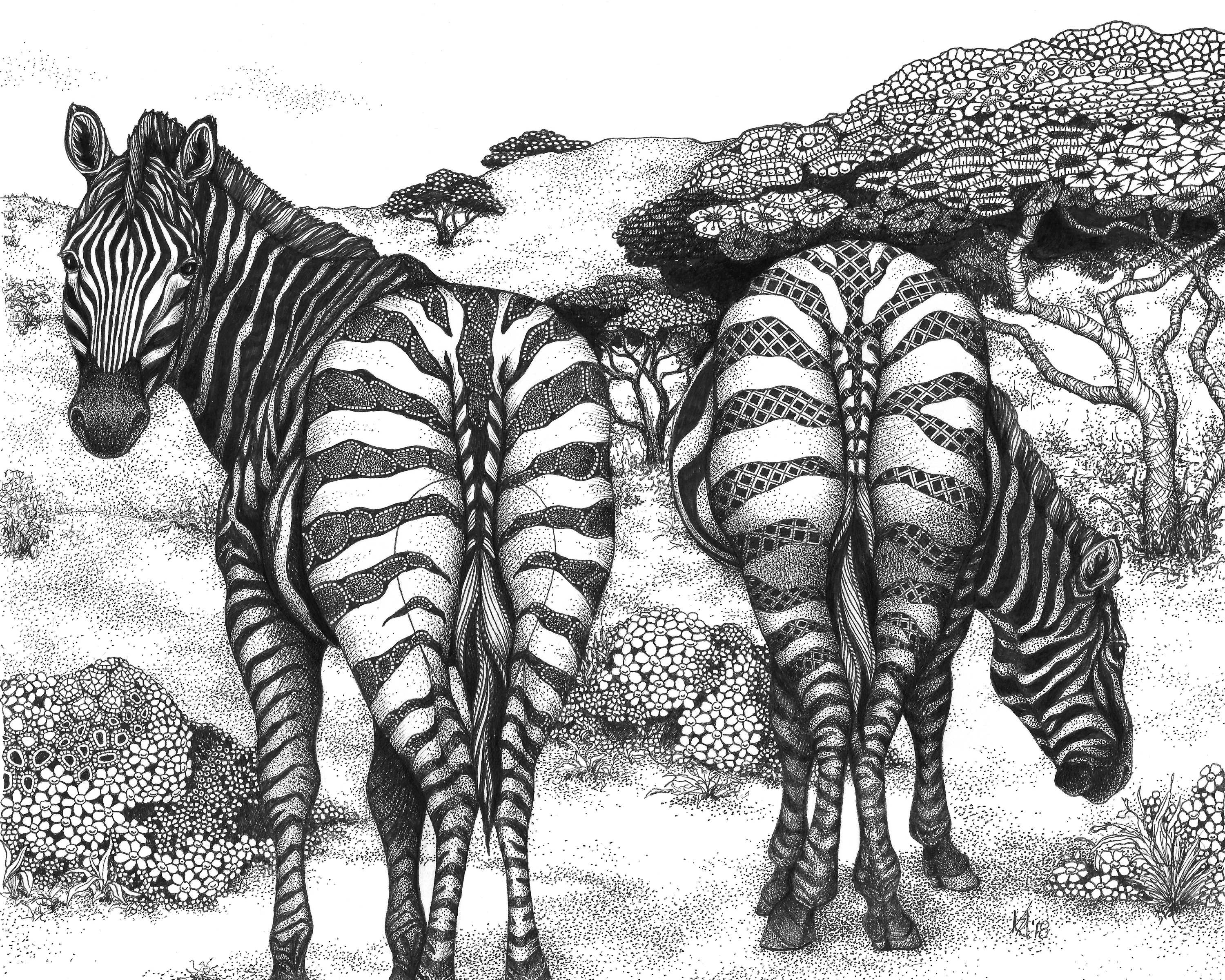 Zebra butts two of a kind jsztyx
