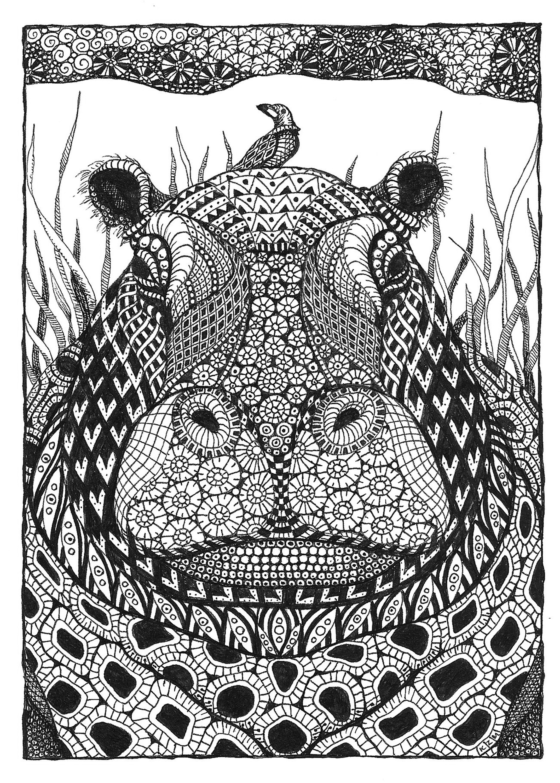 Hippo mntzhr