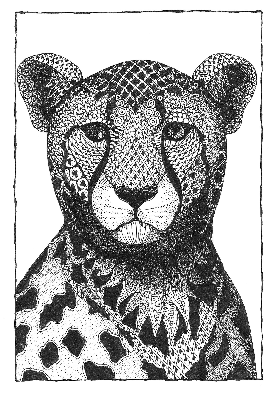 Cheetah hhlw3x