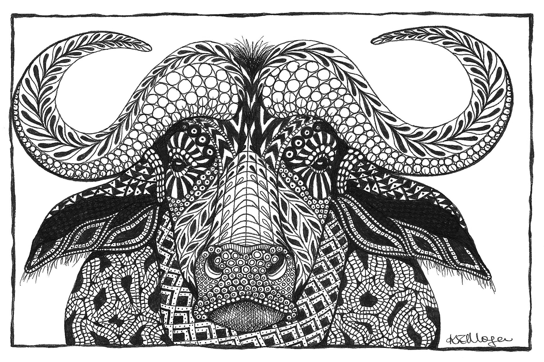 Cape buffalo glujdx