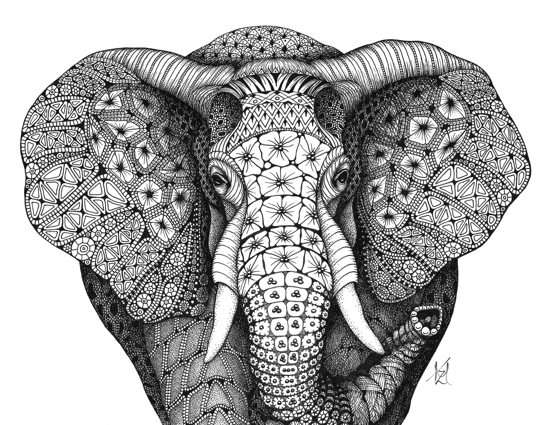 African elephant gkoghh