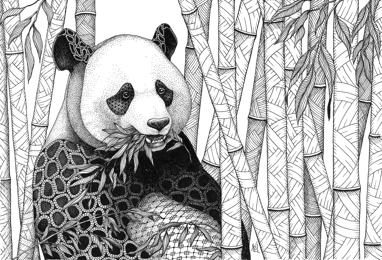 Panda in bamboo tczan5