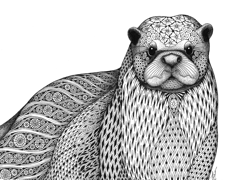 Otter ifipnw