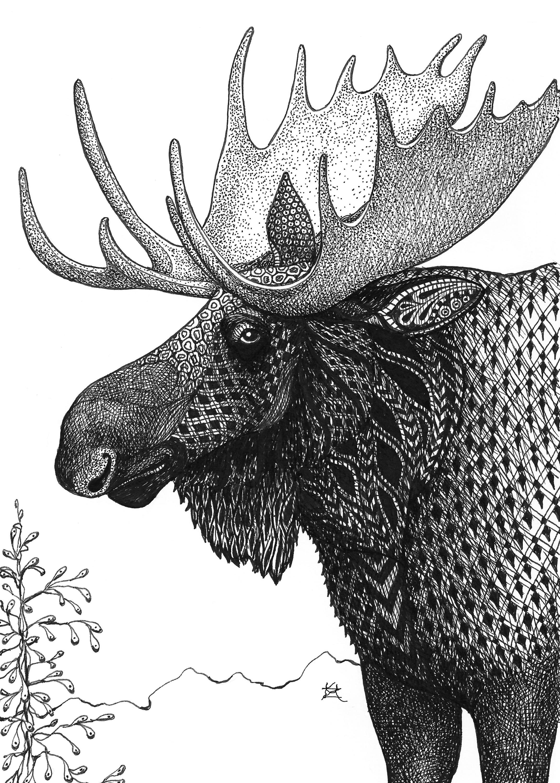Moose sqbhv1