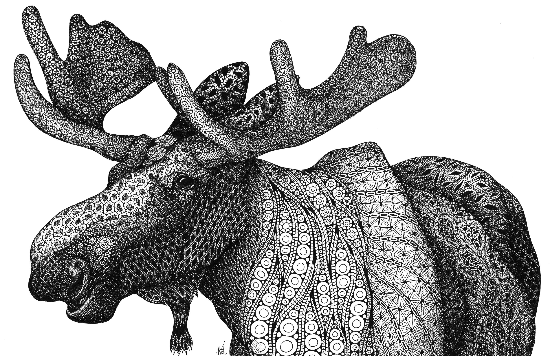Grande moose z5ipya