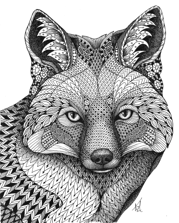 Fox q0zitz