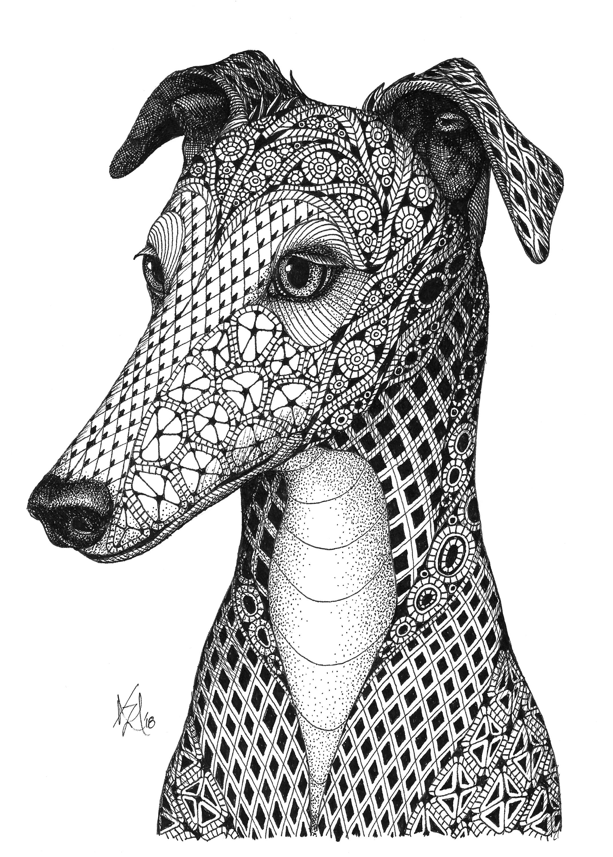 Greyhound fpji2a