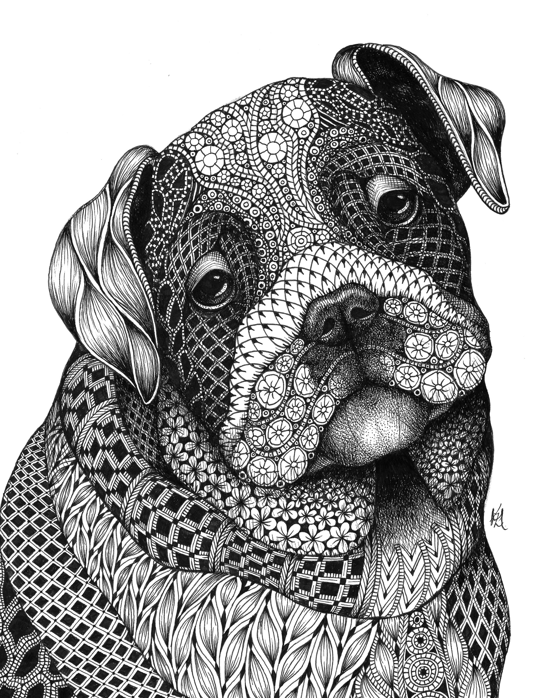 Bulldog pup spt8nr