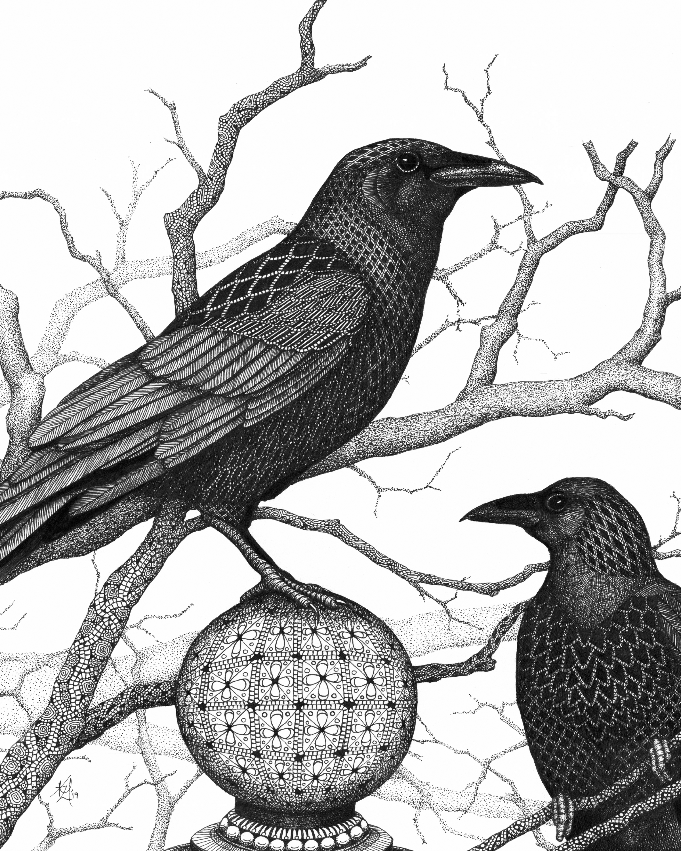 Crows vwkzag