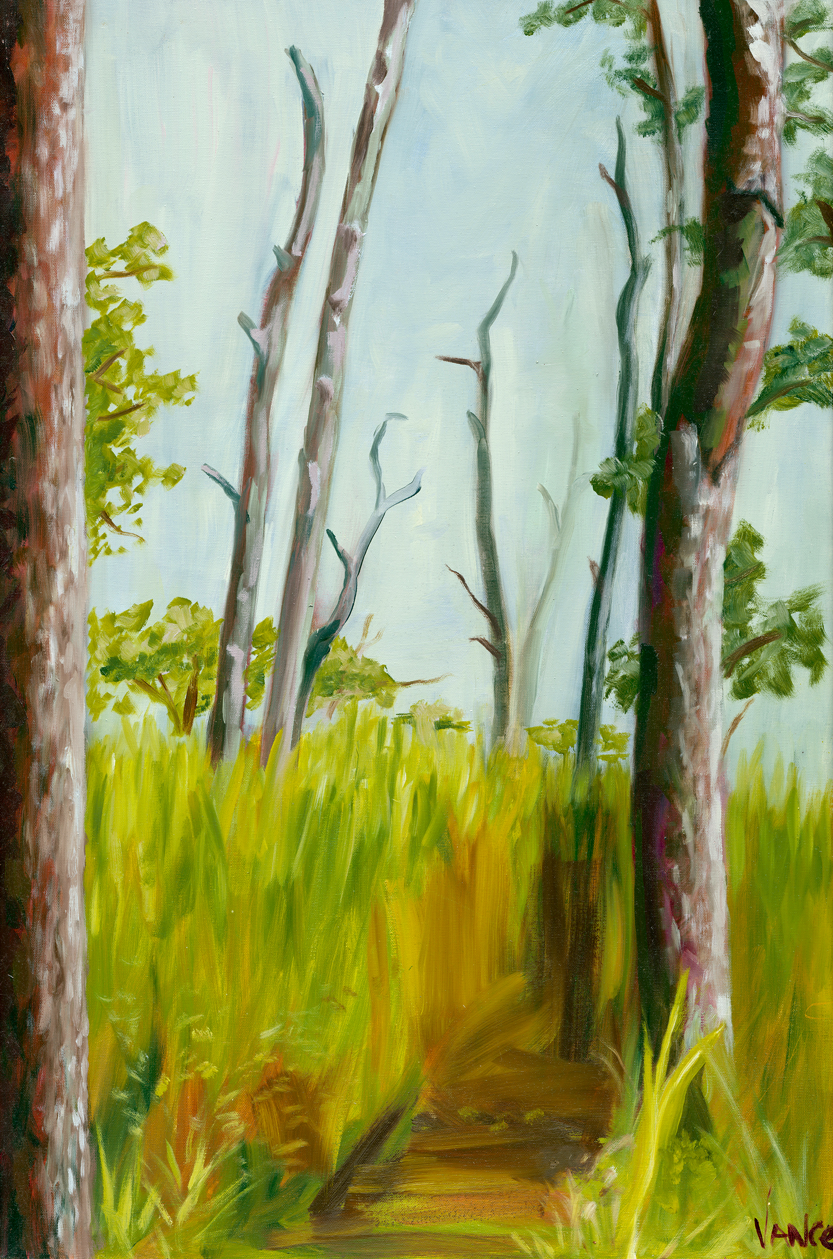 Opv art into the woods low res jpg file vx8nzq