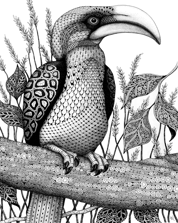 Hornbill eu3v2n