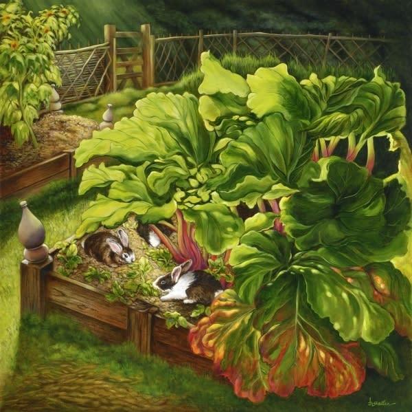 Morning feeding rabbits and rhubarb s8ni7v