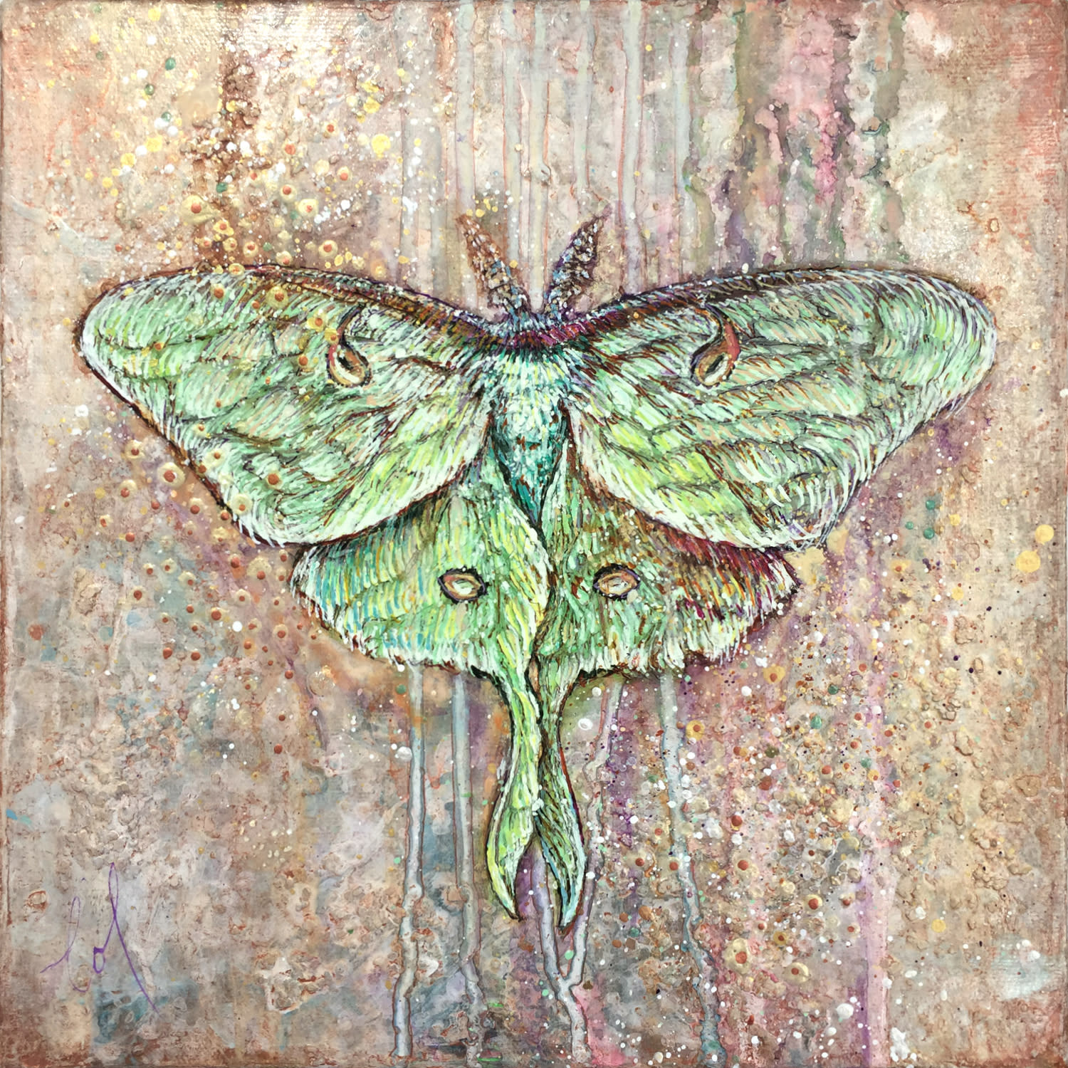 Light guided luna moth 01 tzqowk