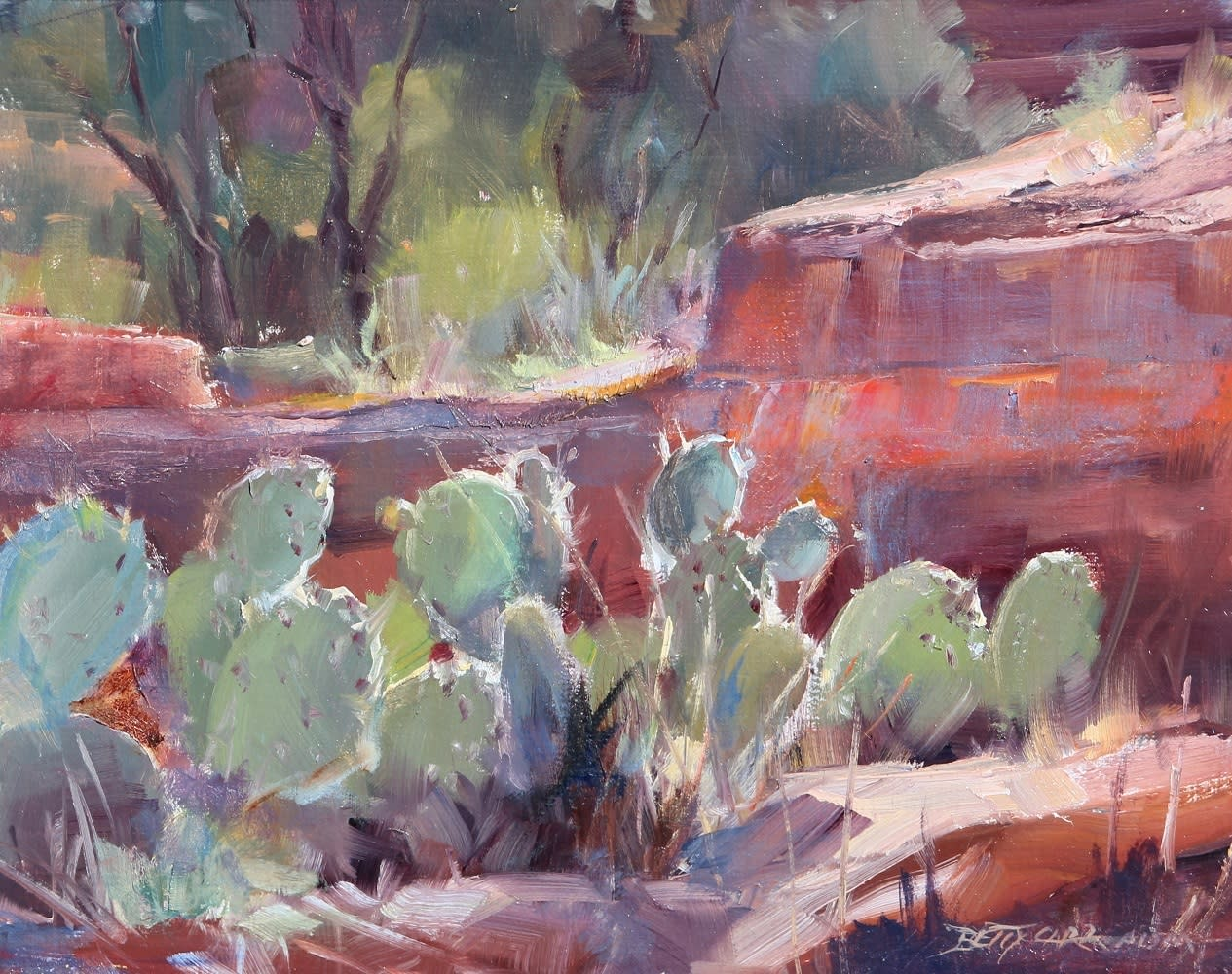 Betty carr cactus lights 11x14 1 100 ncjjug