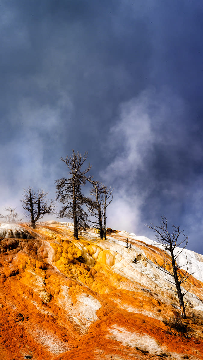 Yellowstone pjxwmg yd0xdb