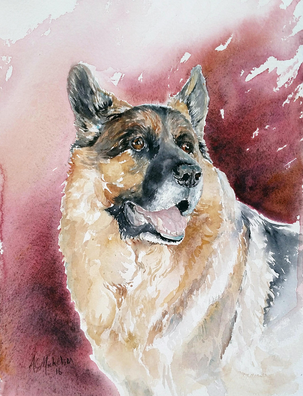 Cruiser dog portrait vjokoo