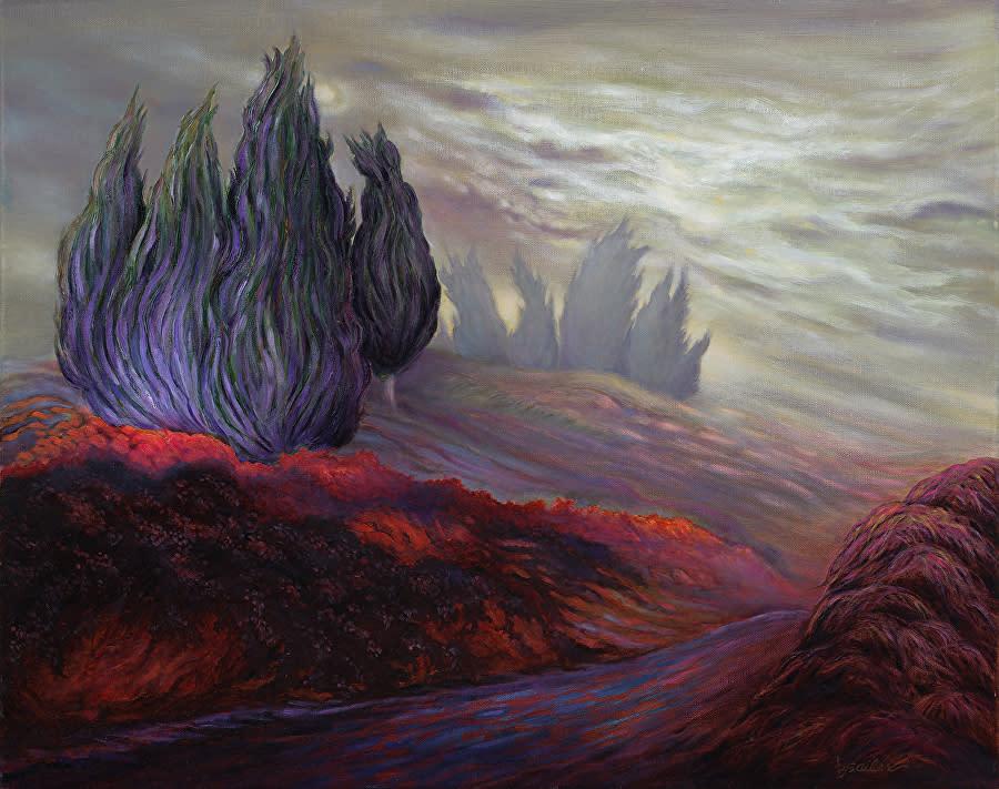 Dream series cypress trail in the mist qplfnc