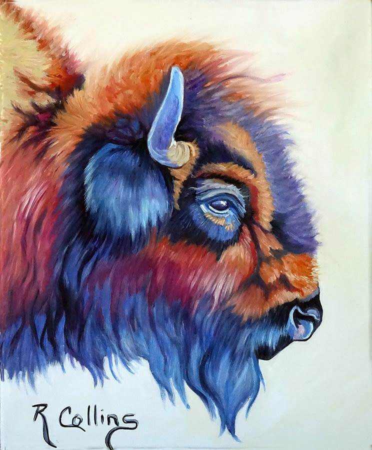 American buffalo the bison fb j9yj1b
