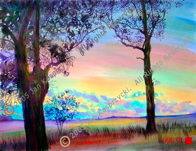 Silhouetted sunset eucalyptus wc tkq5pz