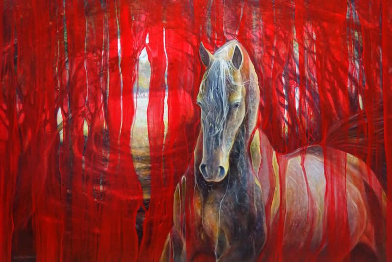 Horse metamorphosis 72 s azp5uo