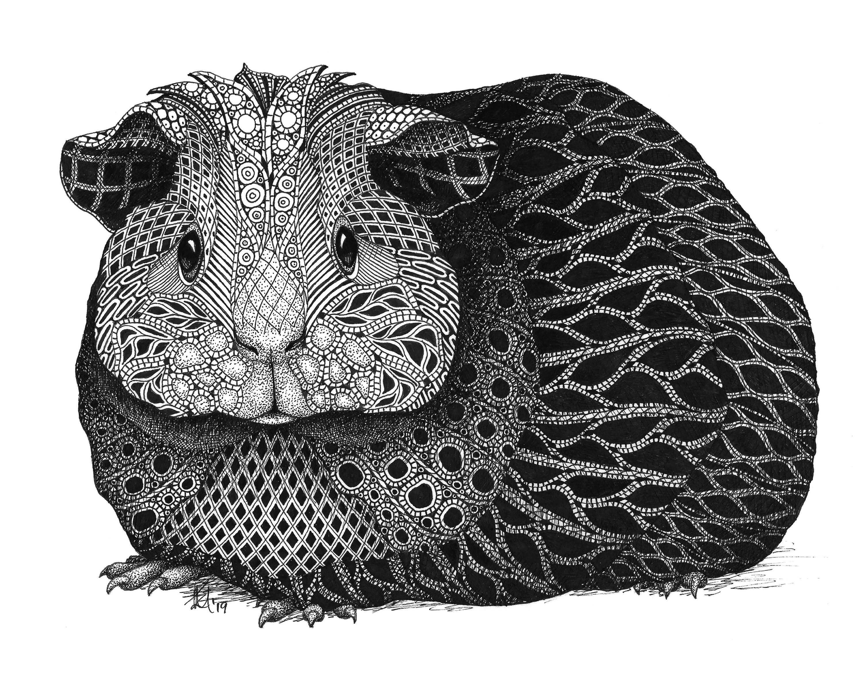 Guinea pig paper prints m24311