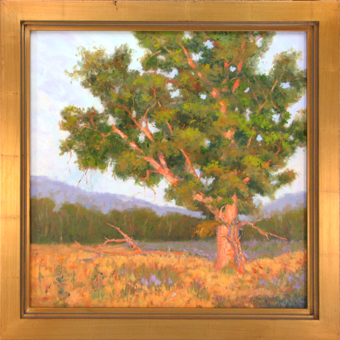 Virginia grass simmons   her dress turns yellow in the fall   oil   24 x 24   1250 ghgfnw