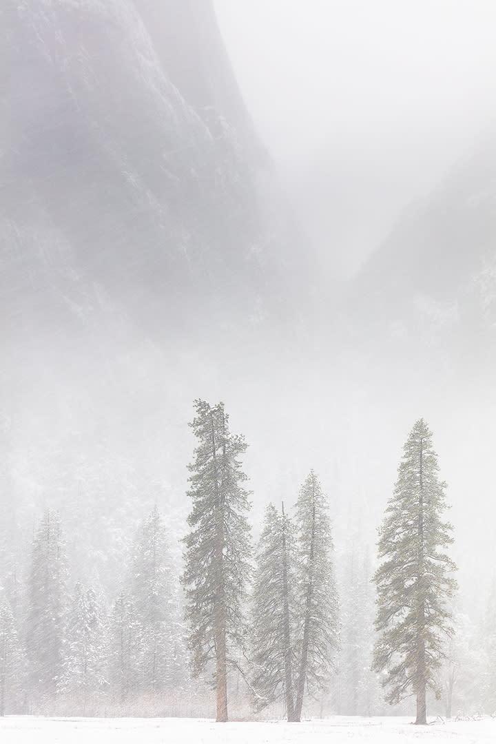 Winter arrives2 yaymm8