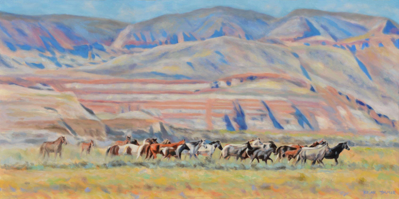 Wild horses r9zmgy