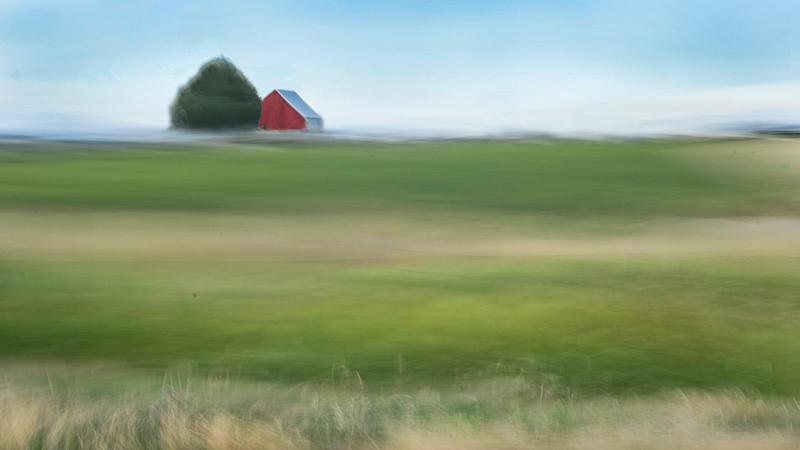 172 pastures molo0z