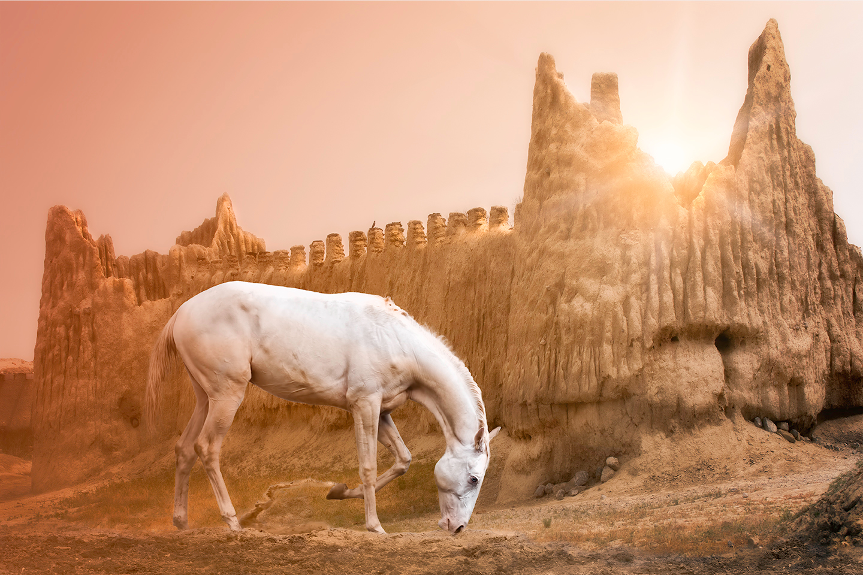 Turkmen sunrise web wefdcx