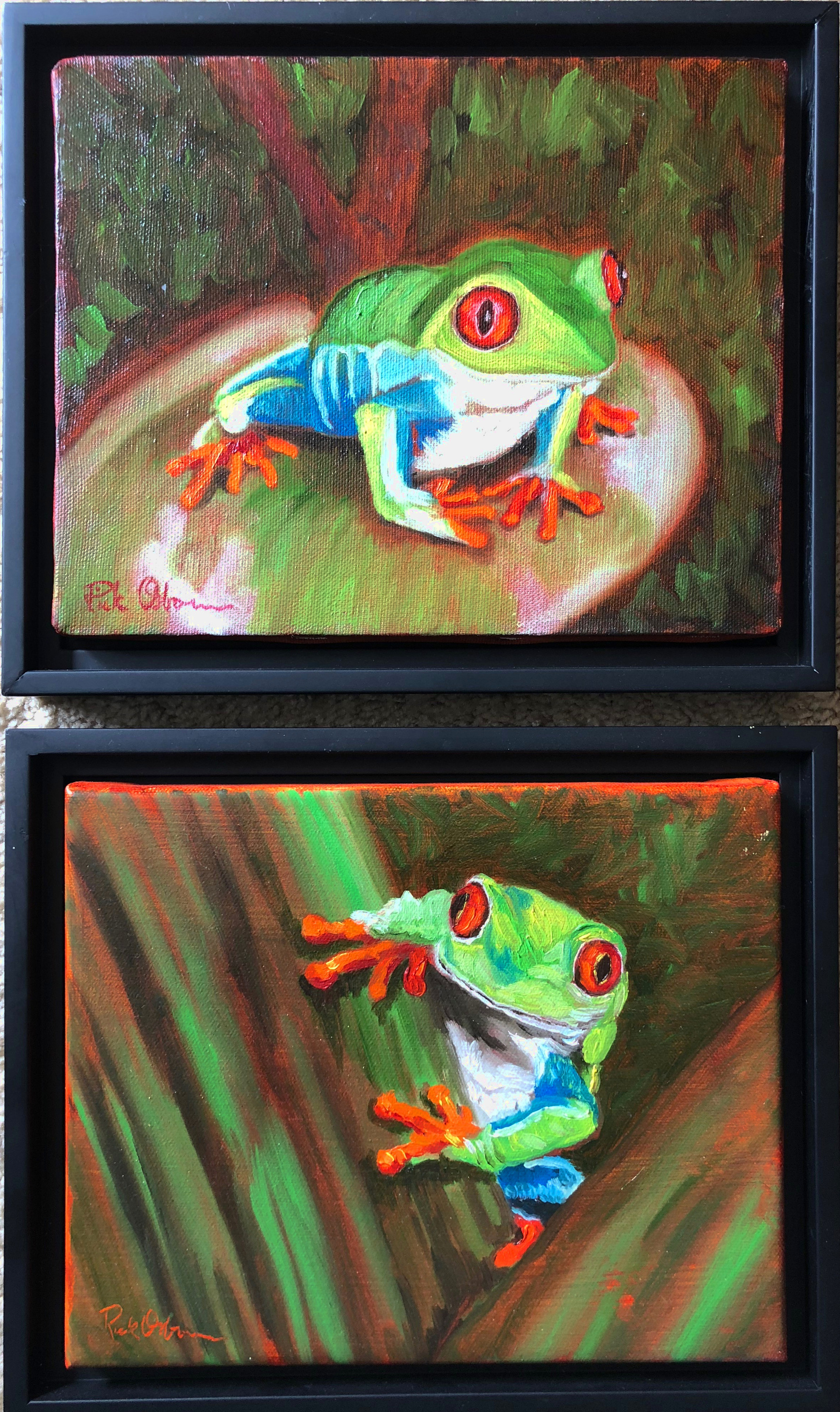 Two tree frogs cgaqe3