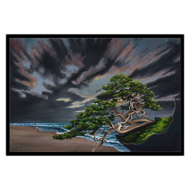 20x30 cgw black frame bonsai beach x5w2v7