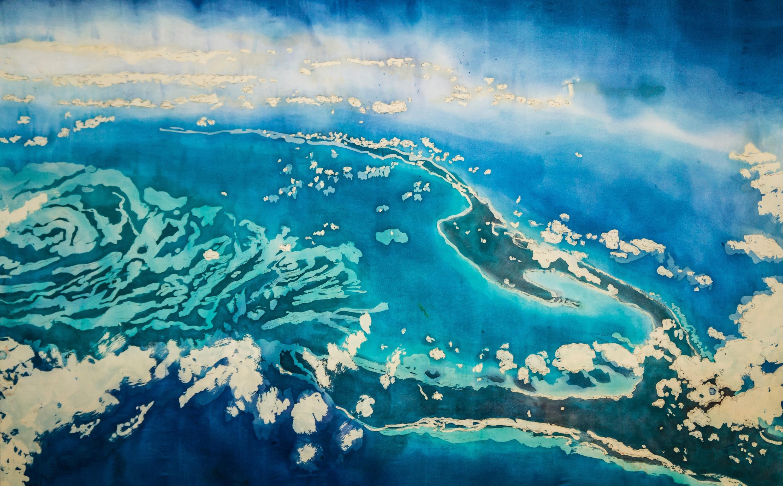 Muffy clark gill agua xxxiii  islands in the stream  rozome on silk  36 x 54 in xlh4yk