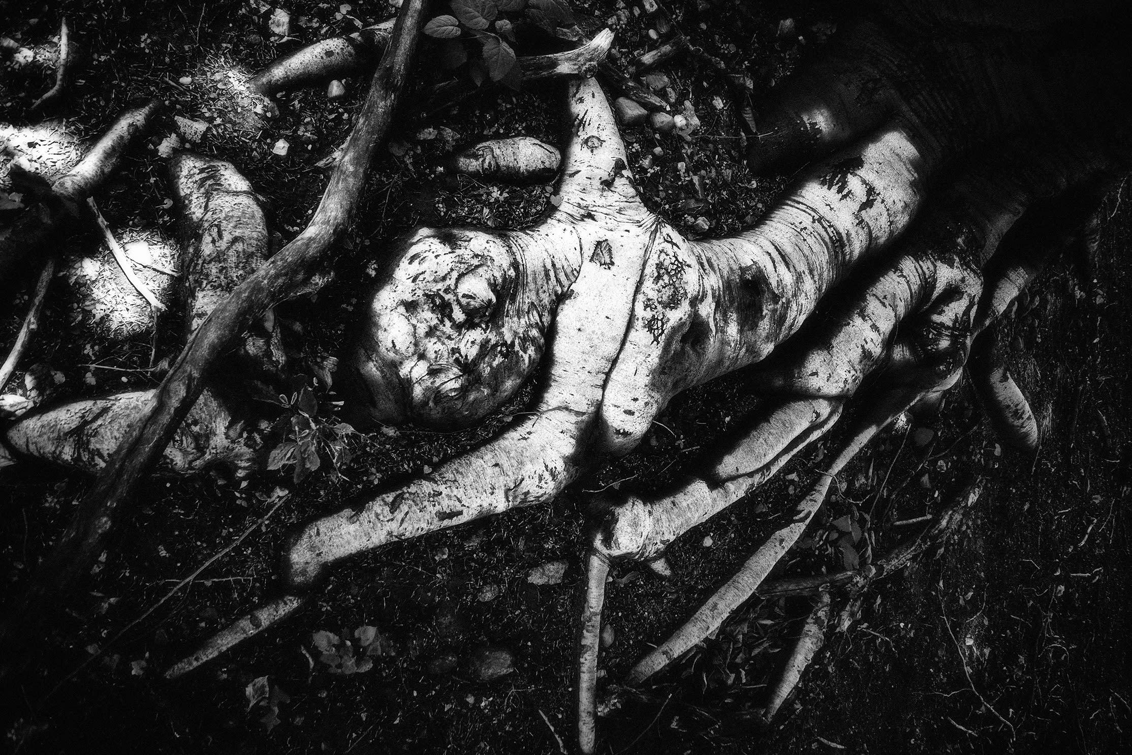 Hanged man lvmlzp