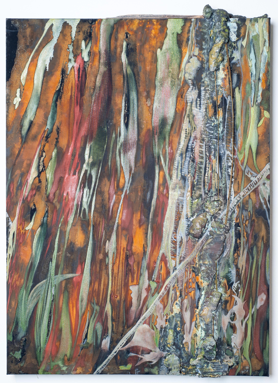 The painted tree 2832 x 4256 cjlvks