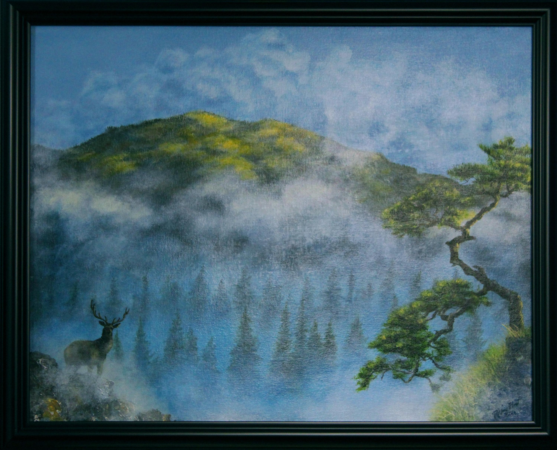 Mistyhills framed x70xei