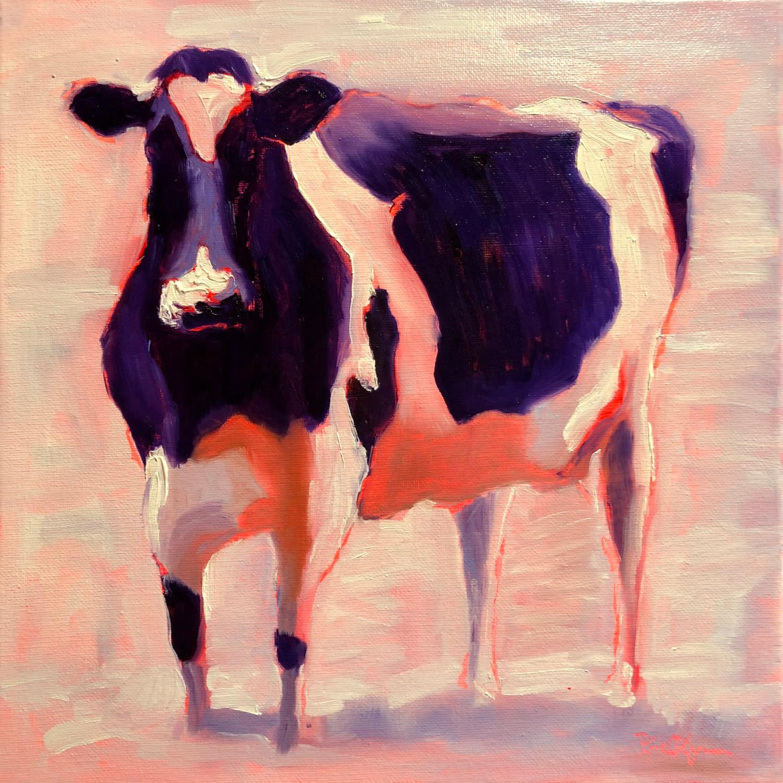 Fat sassy cow gyfuin