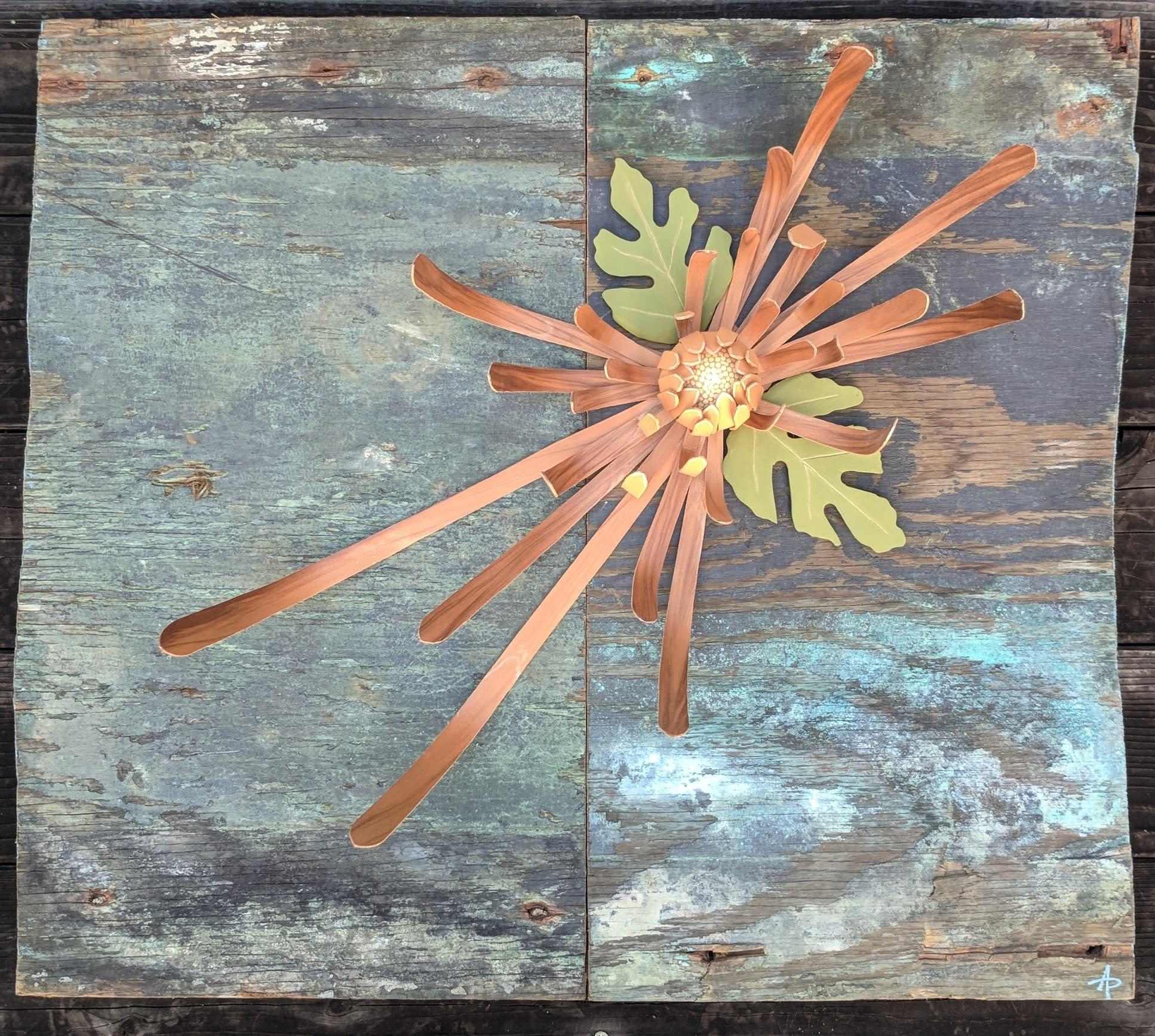 Sunken chrysanthemum ii ugjagf