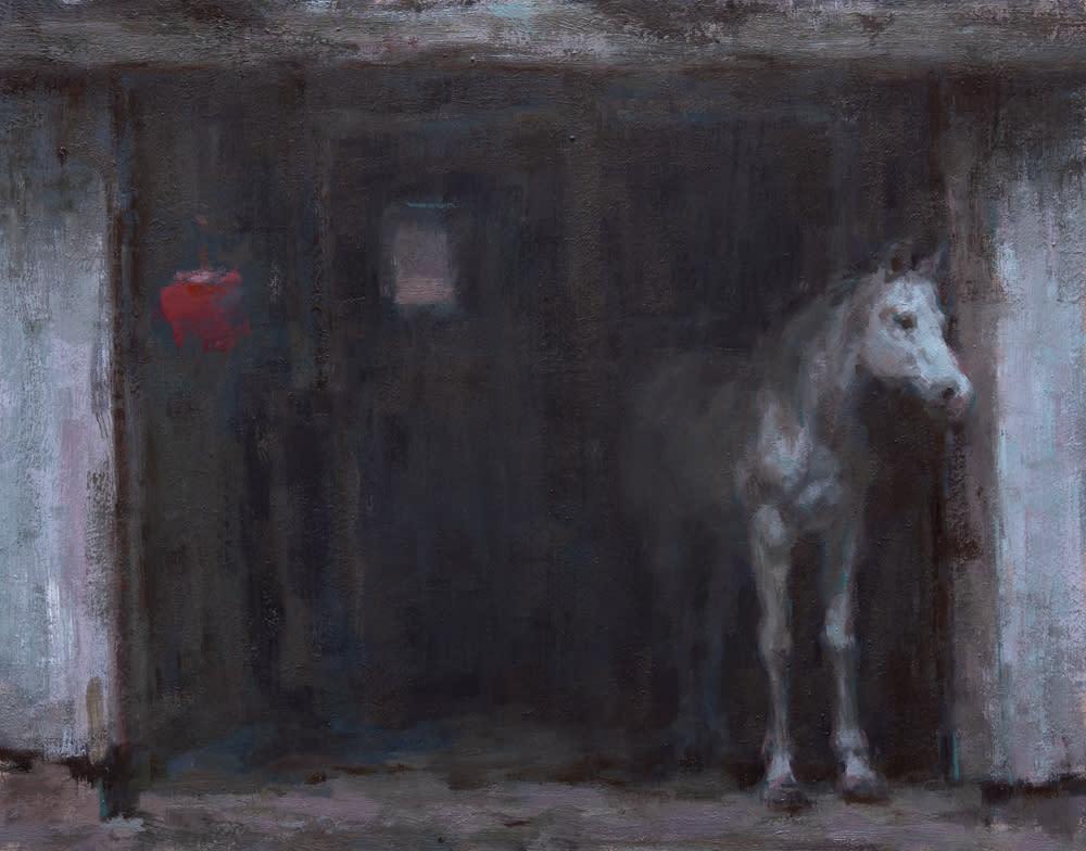 Coberly horse peeking out 1000 z2us4i