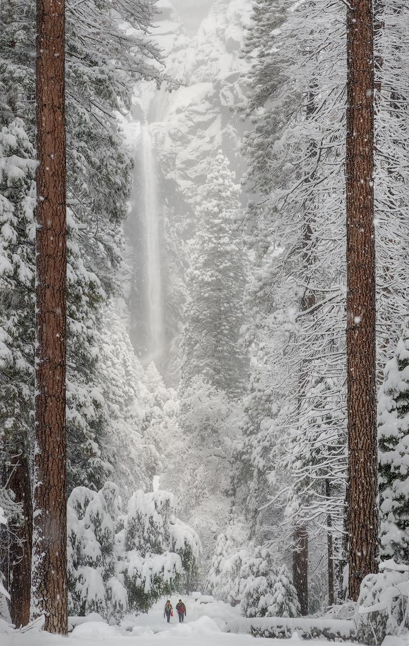 A walk in the snow tkgmui