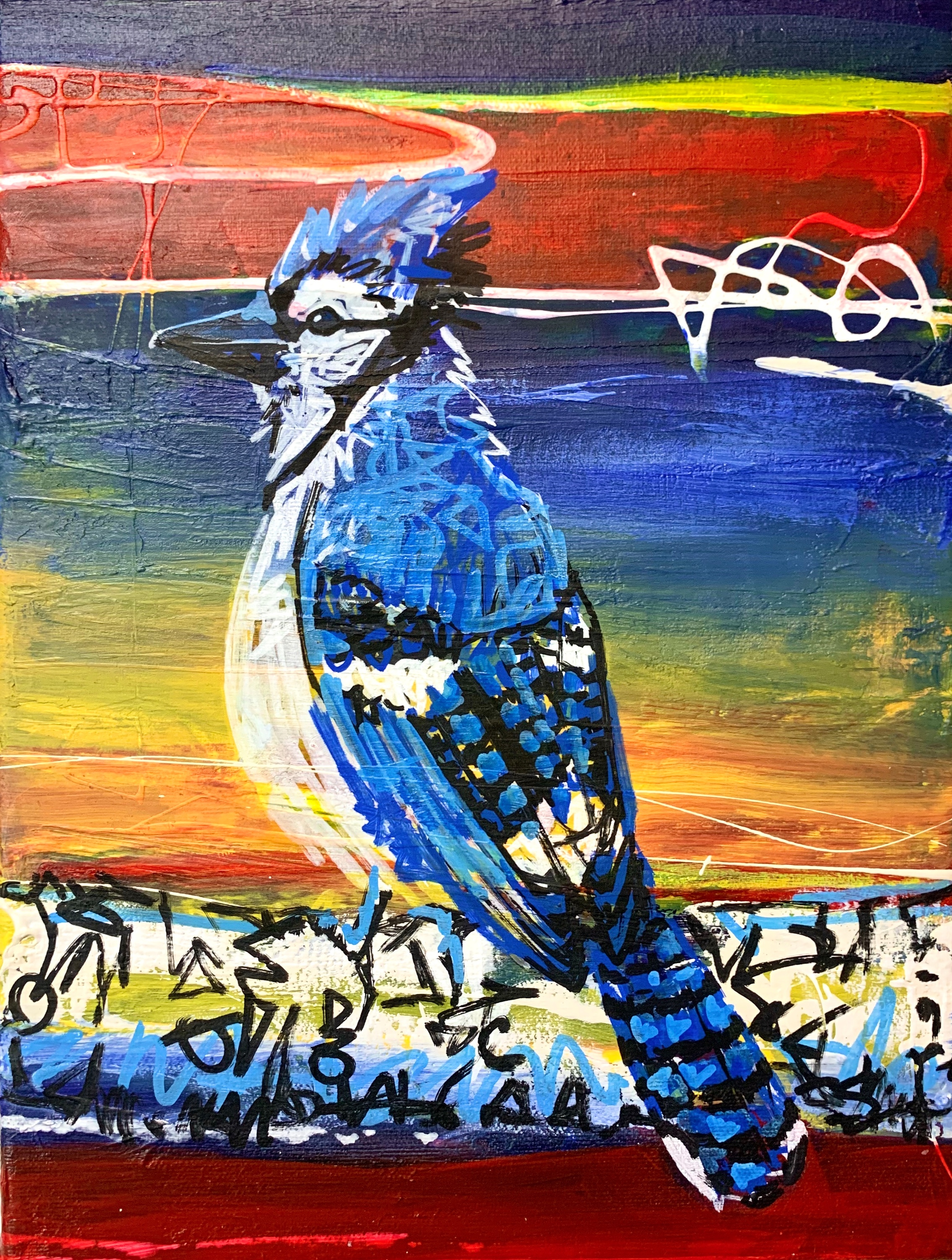 Bo the blue jay 9x12 raoceu