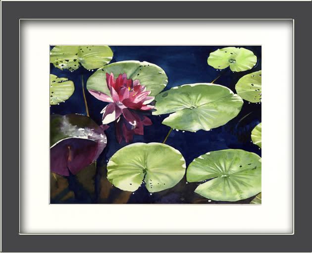 Pink maine lily framed zntzih