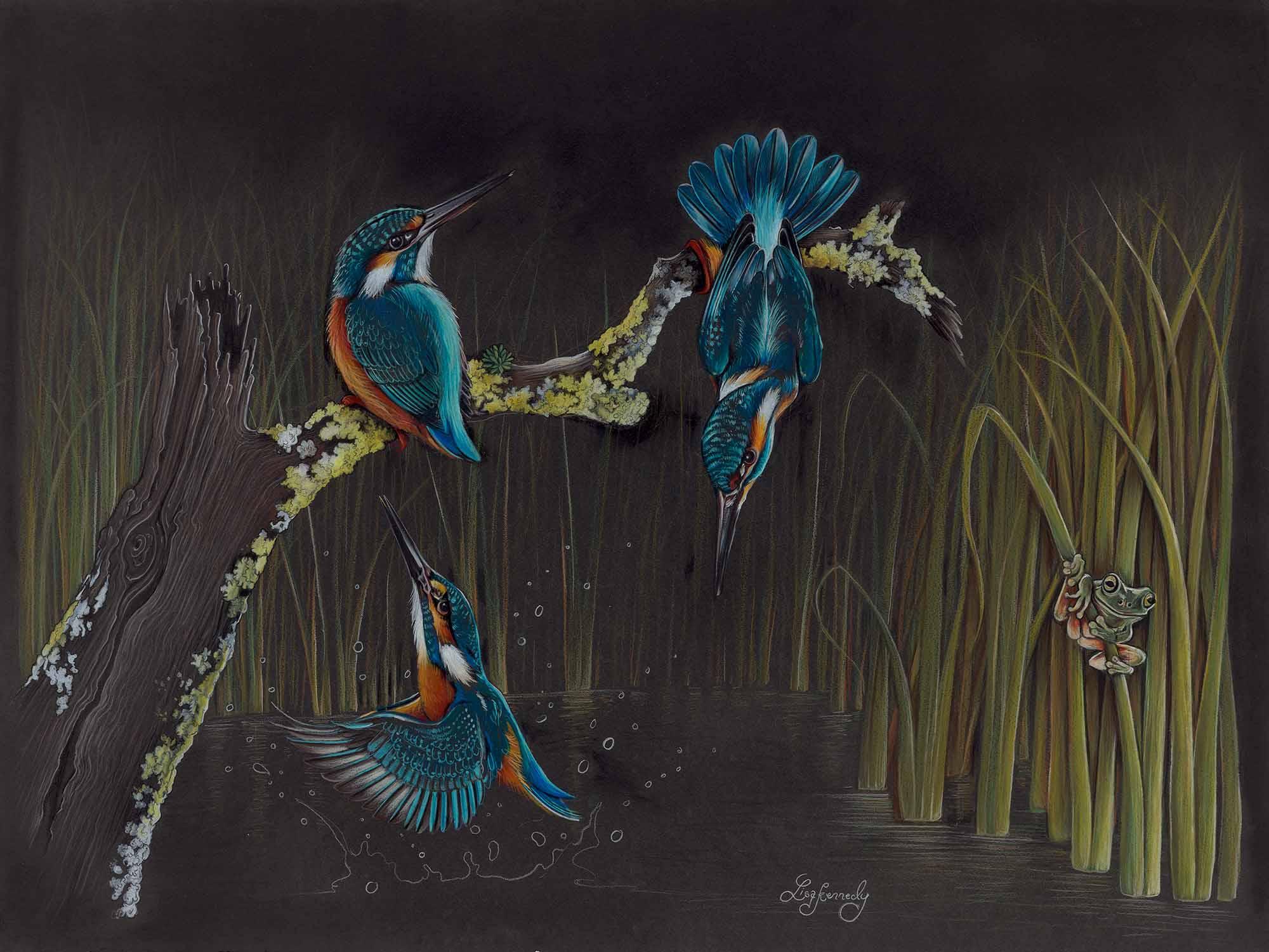 Lisa kennedy 013 kingfisher frenzy 2000px lnlzjx