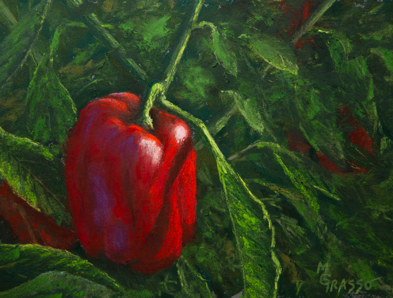 mdg03982019grasso mark 2016 red peppers final lg n6rmel